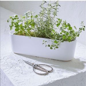 Crate and Barrel Herb Planter with scissors